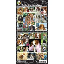 Stickers Cavalier King Charles