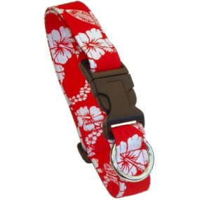 Collier Laguna Rouge - Beach Dog