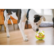 Wobble Ball Toy - P.L.A.Y. Pet Lifestyle and you