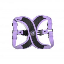 Harnais Active X Step In - Violet - Gooby