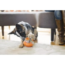 Wobble Ball Toy Orange - P.L.A.Y. Pet Lifestyle and you